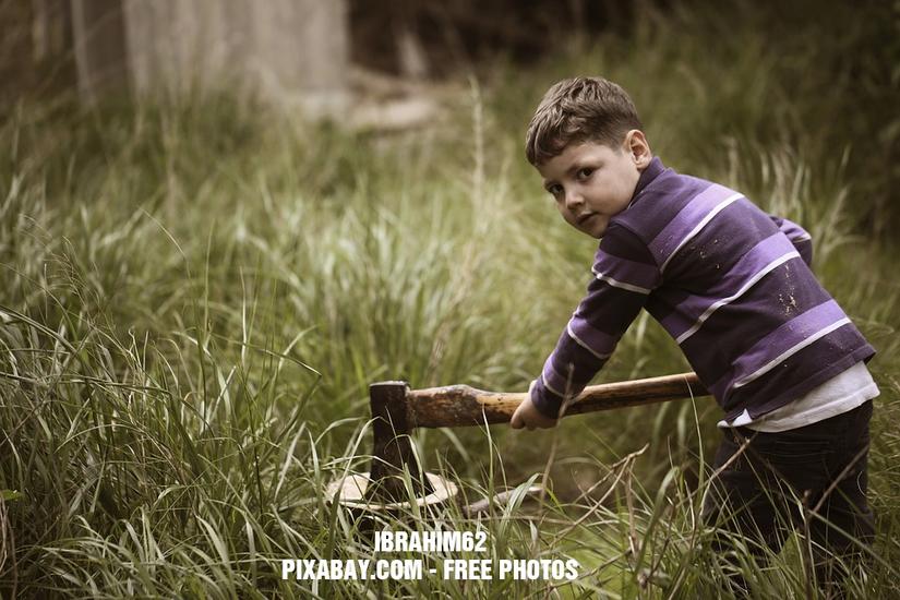 Preview 2016 03 15   jaroslaw kaczynski rabie drewno o